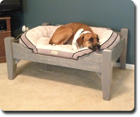 Large 'Prince' Pet Bed